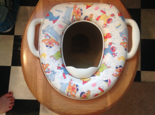 Fieldnotes from the Potty Chair