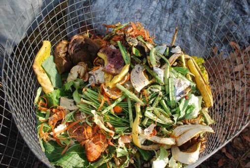 Guerilla Composting