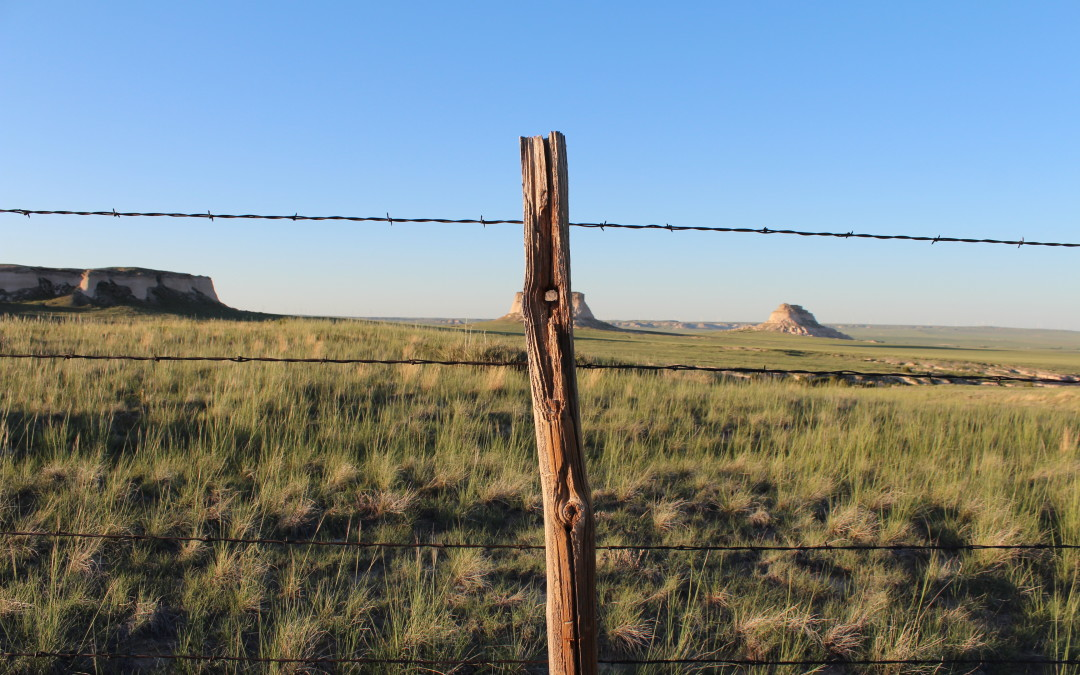 The Pawnee Grasslands or the 51st State?