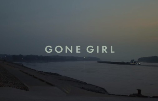 Making Gone Girl Go