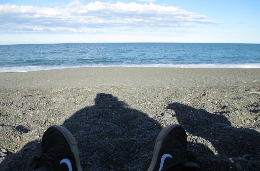 A Shoreside Reverie