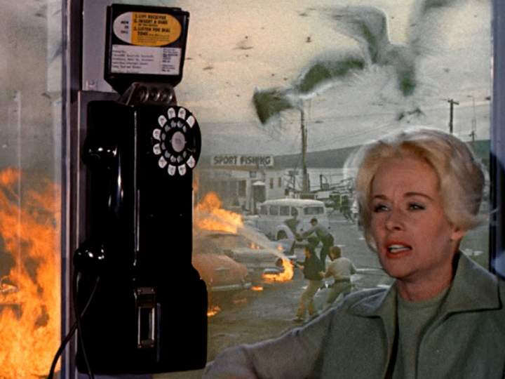 Working Up the Courage to Make a Phone Call
