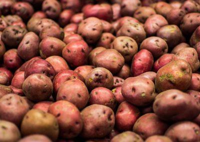 Potato Salad Diaries (Volume II)
