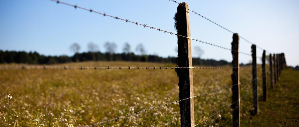 Mending Fence