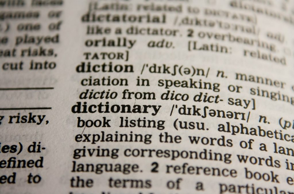 My Silly Dictionary