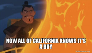 "Meme of character from Mulan lighting a fire. Caption says ""Now All of California Knows It's a Boy"""