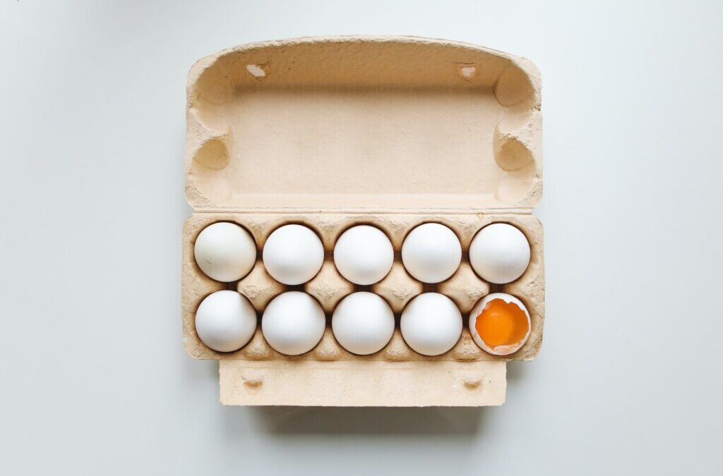 President Biden and the Egg Carton