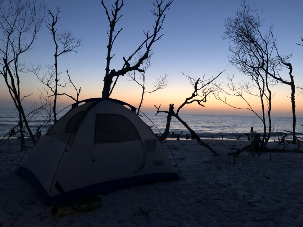 sunset over a tent through the scraggly trees