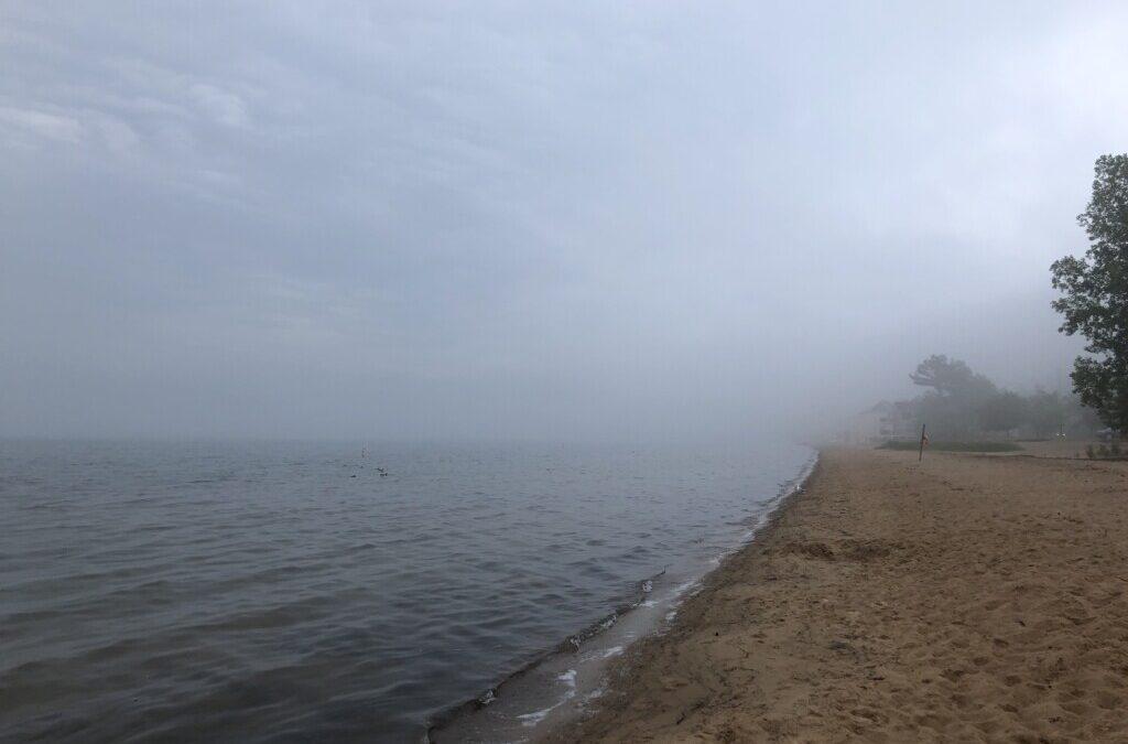 Facing the Fog
